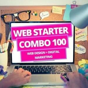 web-starter-100